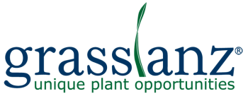 Grasslanz Technology Limited