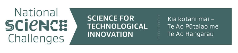 Science for Technological Innovation