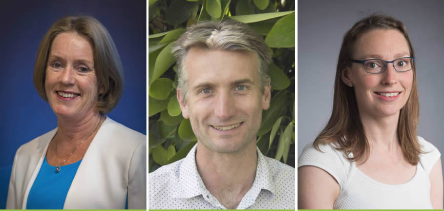 KiwiNet's research commercialisation success to scale up; new chairperson and board members announced